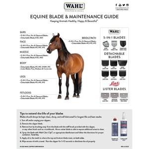 Equine Blade Guide 2020