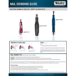 Nail Grinder Guide